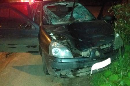От полученных травм пешеход после столкновения скончался на месте