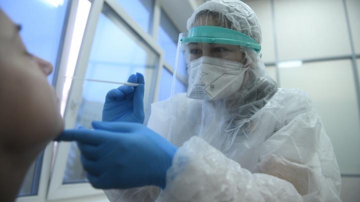 Глава Роспотребнадзора пояснила, кому в Свердловской области делают тест на COVID-19 бесплатно
