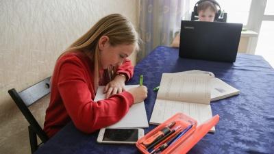 «Это тараканы родителей и детей»: доцент ОмГПУ об идее отменить домашние задания в школах