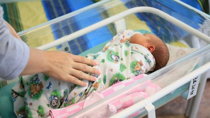 В Красноярске арестовали трех торговцев новорожденными детьми и одну псевдосуррогатную мать