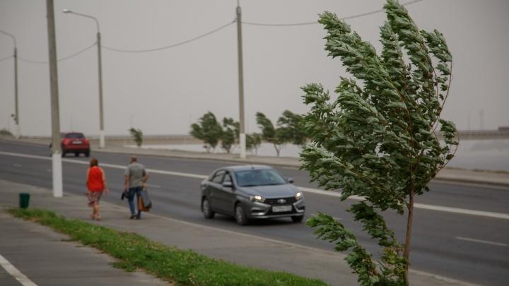 В Волгограде и области объявили штормовое предупреждение
