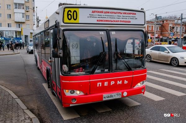 Количество автобусов маршрута № 50 увеличат