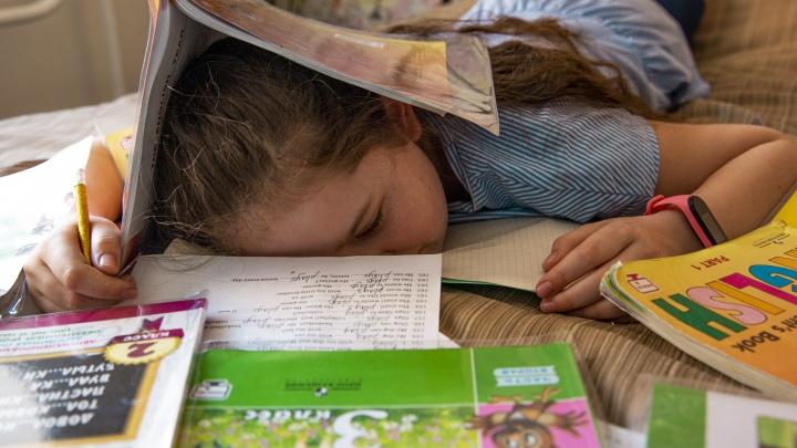 В Минобре рассказали, к какой форме обучения нужно подготовиться школьникам и их родителям с 1 сентября