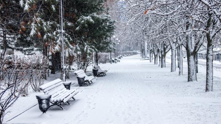 Мороз и снег: какая погода ждет ростовчан на этой неделе
