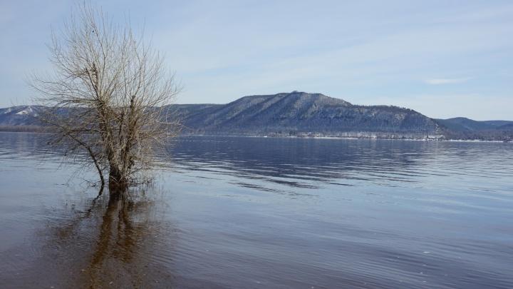 В «Самарской Луке» построят горнолыжный курорт и сделают пляж