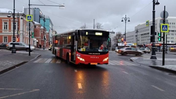 В центре Перми автобус на пешеходном переходе сбил ребенка