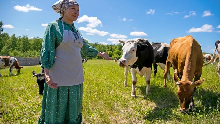 Маленький, но гордый бизнес: фермер перед эпидемией купила 80 гектаров земли и привезла редких животных