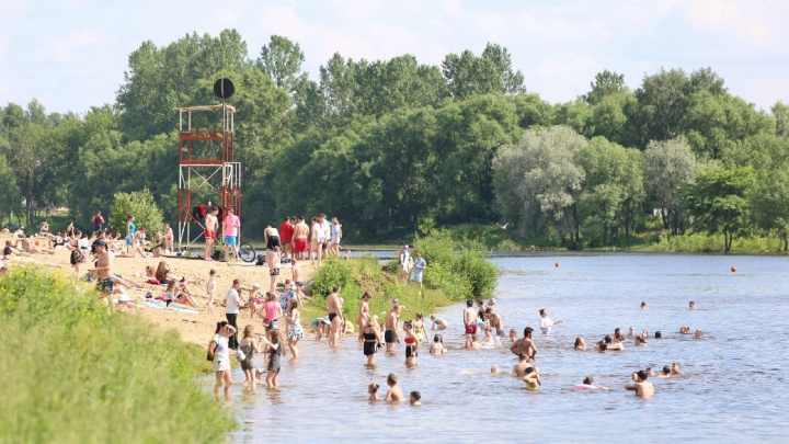 В Ярославле начались облавы на отдыхающих на пляжах: нарушителям полицейские выписывают штрафы