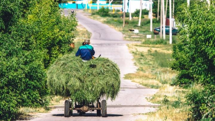 «Сидя в больших городах, мы думаем, что знаем жизнь»: журналист из Самары — о российской глубинке