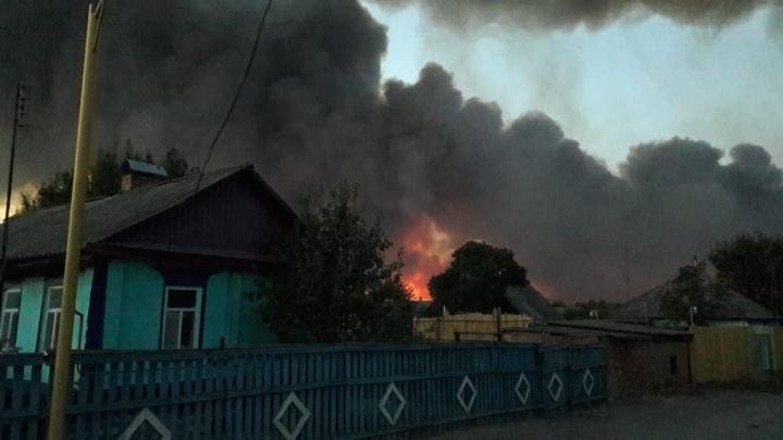 МЧС: более 520 га лесов еще горят на Дону, но угрозы поселениям нет