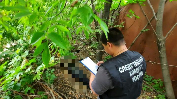 Голову принесли собаки: в Саратове обнаружили расчлененный труп волгоградца