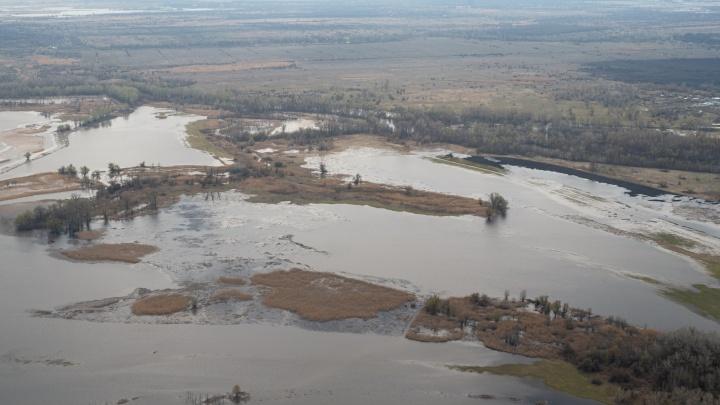 «Не вода, а выжженная земля»: показываем с высоты обводнение Волго-Ахтубинской поймы