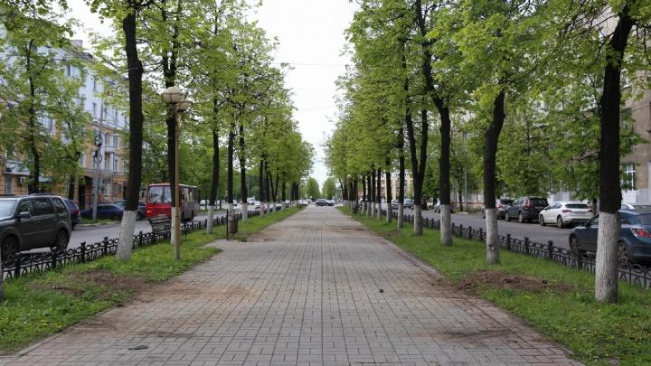 Власти объяснили, куда дели арки-сердца и лавки с проспекта Ленина в Ярославле