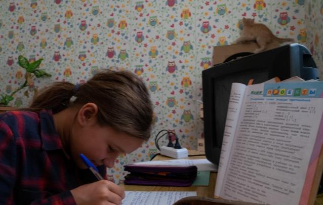 Омские школьники не будут писать итоговые контрольные в этом году