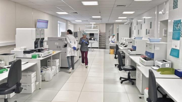 У пяти процентов проверившихся красноярцев обнаружили антитела к коронавирусу