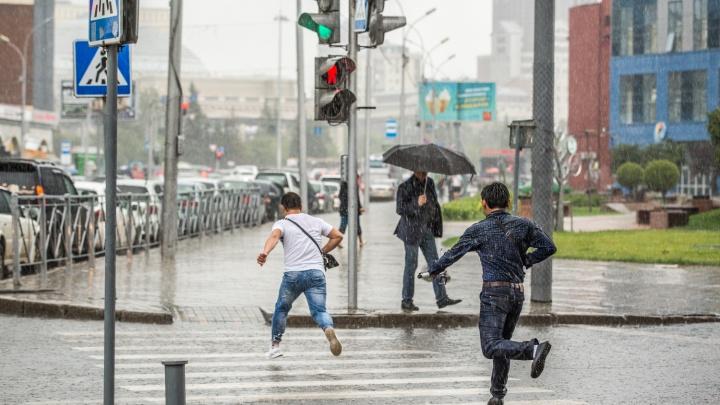 Синоптики рассказали, когда в Новосибирске пойдут дожди: изучаем прогноз погоды на три дня