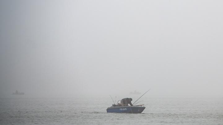 Промысловая рыба в Азовском море начала вымирать из-за обмеления Дона