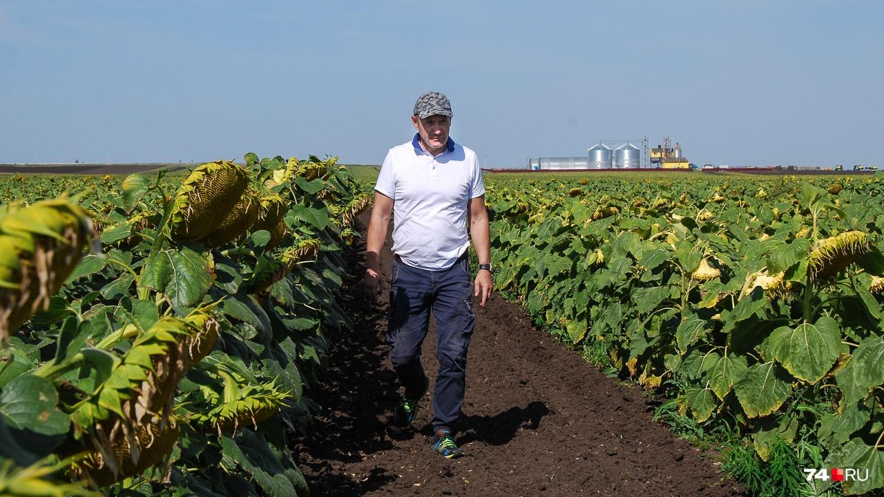Фермер Денис Шумских идёт вдоль полей подсолнухов. На фоне — его впечатляющая ферма