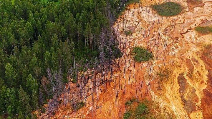 Власти объяснили, почему не могут закрыть Лёвихинский рудник, из которого текут кислотные реки