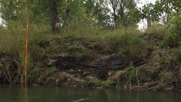 Новосибирец обнаружил на Оби обросшую островом «лодку Ермака»