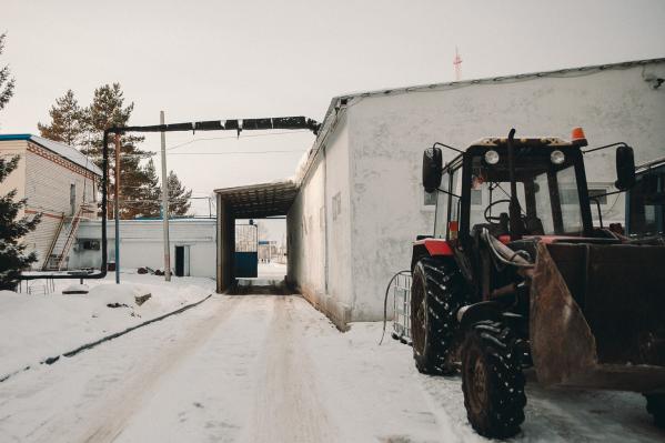 Трагедия произошла в начале марта. По факту смерти работника фермы проводят проверку
