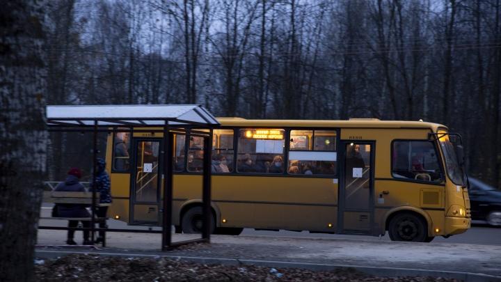 Урбанист — об избавлении Ярославля от маршруток: «Если не наделать ошибок, это будет большой шаг»