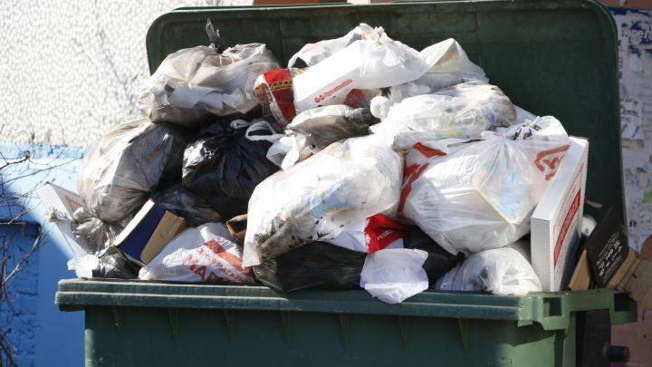 Сотни жалоб, неуплата штрафов и невывоз мусора: в правительстве области обсудили работу регоператора