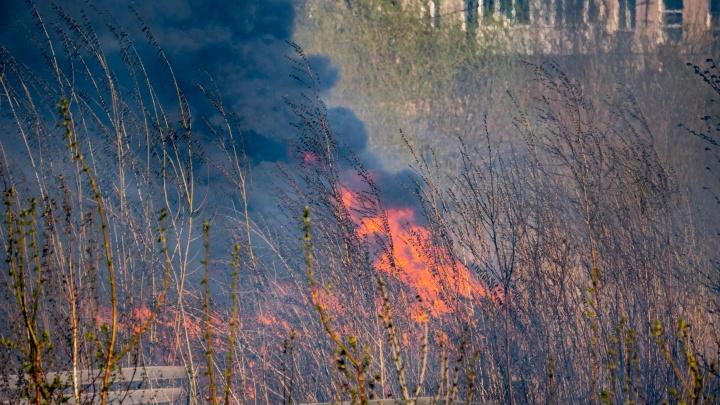 Аэроцикл в гараже, мощный пожар и затопленное село: десять материалов NGS55.RU не о коронавирусе