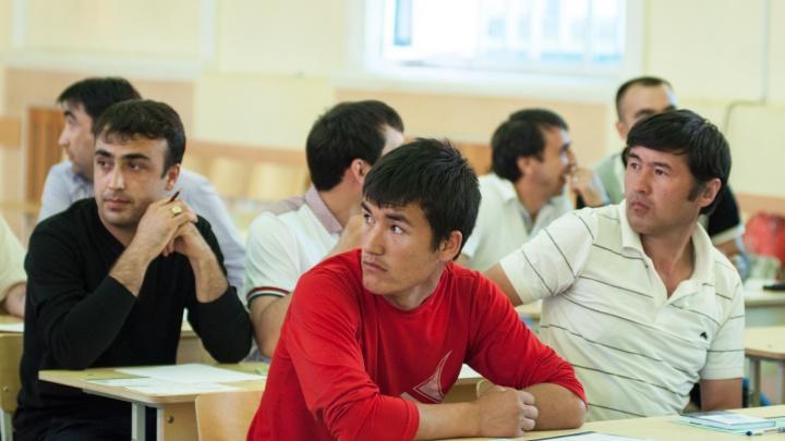 В Свердловской области стало больше мигрантов-нелегалов