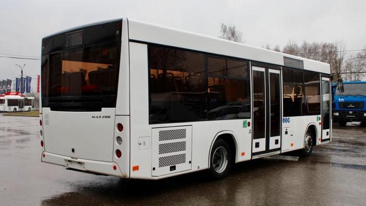 На улицах Архангельска появится новый автобус среднего класса