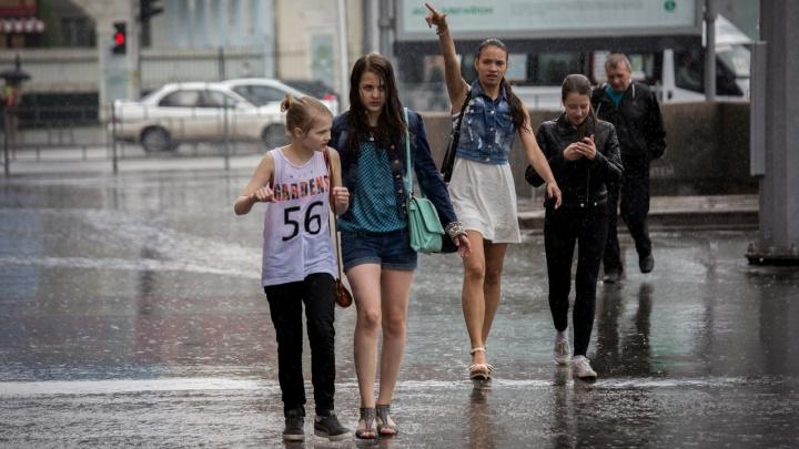 Спадёт ли жара в Новосибирске на грядущей неделе — смотрим новый прогноз синоптиков