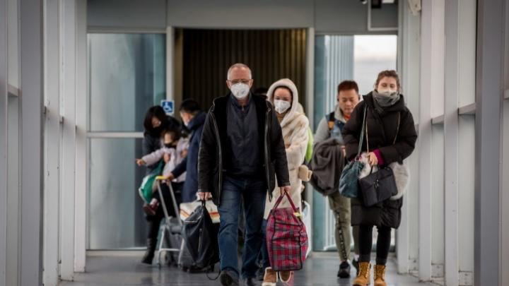 Восемь туристов, застрявших за границей из-за коронавируса, вернули в Ярославскую область