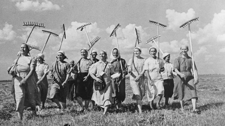 «Куда делись настоящие женщины?»: жители Башкирии устроили в соцсетях настоящую войну полов
