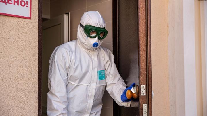 Коронавирус обнаружили у 179 жителей Новосибирской области
