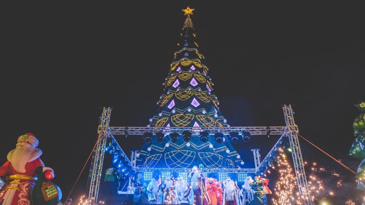 В Перми началась подготовка к установке главной новогодней елки