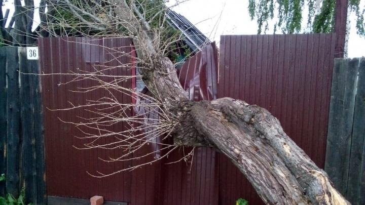 Если мое имущество пострадало из-за урагана, я получу компенсацию? Отвечают юристы
