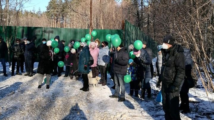 «Чиновники не выходят общаться к людям»: экоактивисты организовали акцию против застройки леса в Уфе