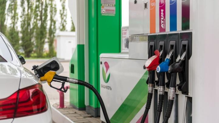 «Считаем до ста»: какой заливать бензин — 92, 95 или 100