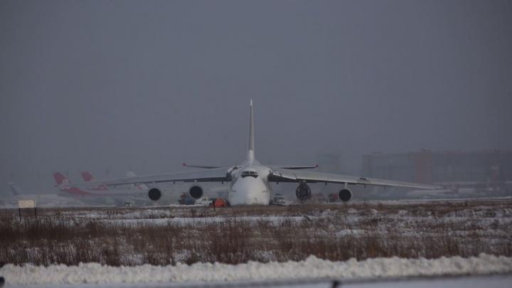 Летел из Южной Кореи в Вену: что авиакомпания рассказала про экстренно севший в Толмачёво самолет