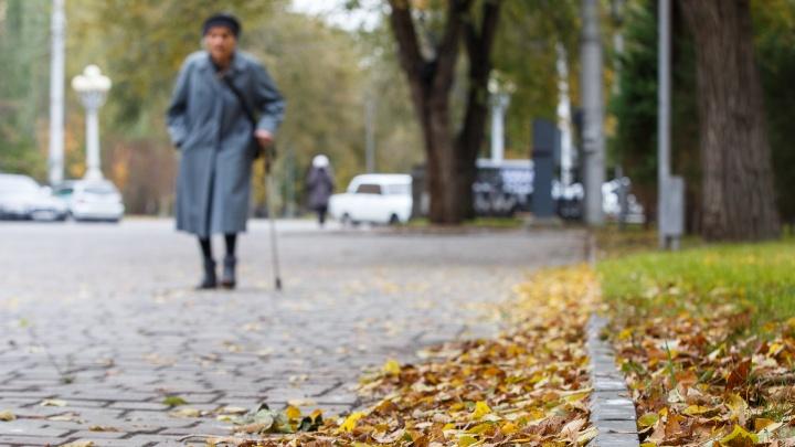 Под деревьями не парковаться: Волгоград ждет усиления ветра