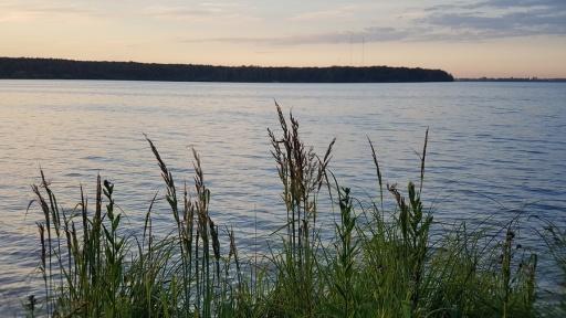 Власти Зауралья взяли под охрану памятник природы «Озеро Светленькое»