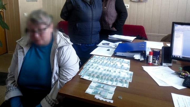 Полгорода подняла на уши: в Волгограде почтальон заставила полицию искать вымышленных грабителей