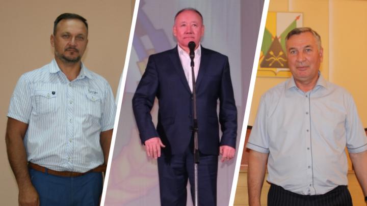 Стали известны самые богатые главы омских районов
