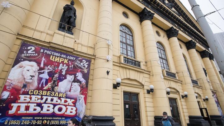 Путин, сбежавший пациент и ремонт цирка: события 17 декабря в Ростове