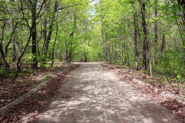 Парк защищают от застройки