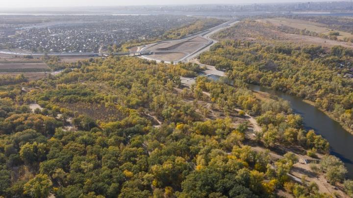 Дешево и сердито: ярославская фирма построит трассу в Волго-Ахтубинской пойме