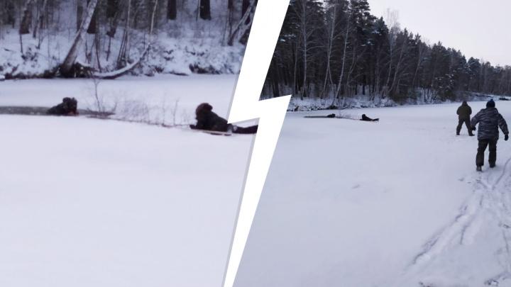20 минут в ледяной воде: в Бердске рыбак провалился под лед — видео, как его спасали