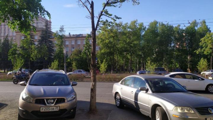 На главном проспекте Челябинска предложили открыть летние кафе по европейскому стандарту