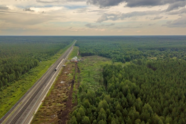 Лесовосстановительные мероприятия будут считаться завершенными, когда земли будут отнесены к тем, на которых расположены леса