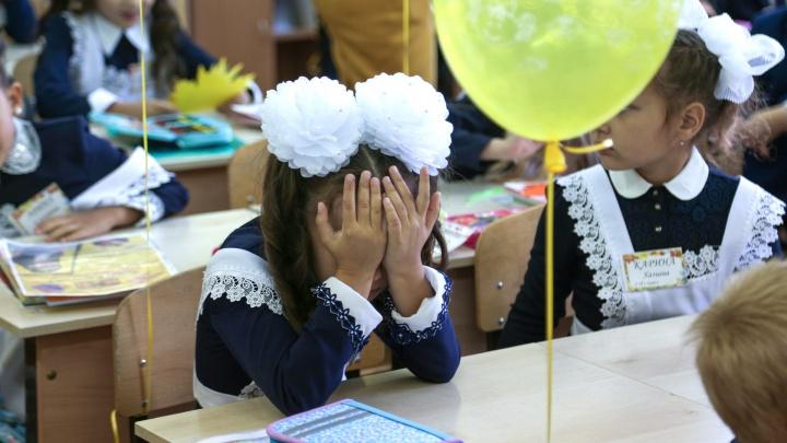 «Скоро алфавита не хватит»: в школе под Уфой за раз ввели 13 первых классов